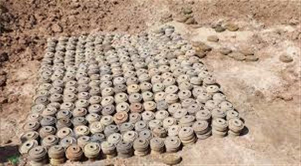 مسام  انتزاع أكثر من 1800 لغم حوثي خلال الايام الأخيرة